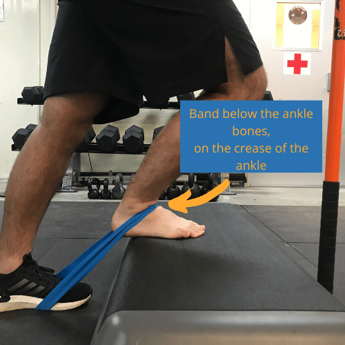 the placement of the band is important for the banded ankle mobilization